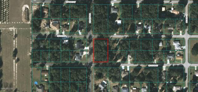 TBD SE 84th Terrace, Summerfield, FL 34491 (MLS #545854) :: Realty Executives Mid Florida