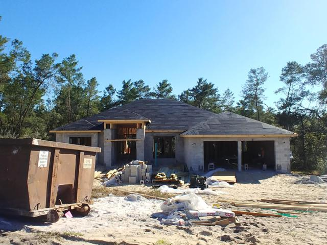 4294 SW 111th Place Place, Ocala, FL 34476 (MLS #545939) :: Realty Executives Mid Florida