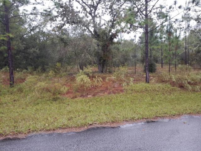 0 SW 204 Avenue, Dunnellon, FL 34431 (MLS #545955) :: Pepine Realty