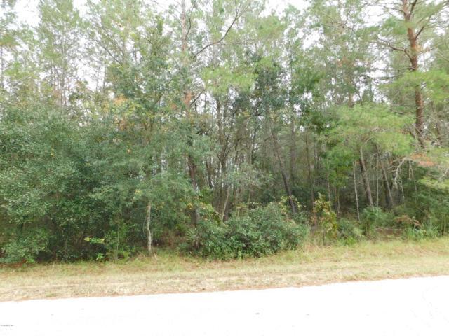 0 SW 40th Court, Ocala, FL 34476 (MLS #546000) :: Realty Executives Mid Florida