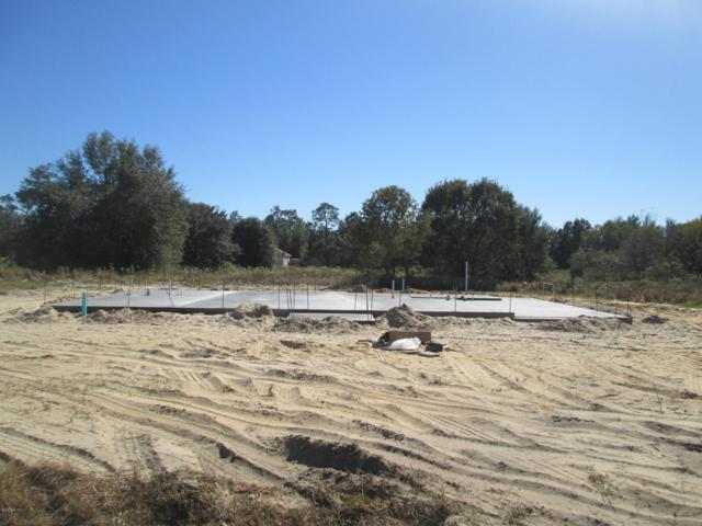 60 Dogwood Drive Pass, Ocala, FL 34472 (MLS #546007) :: Thomas Group Realty