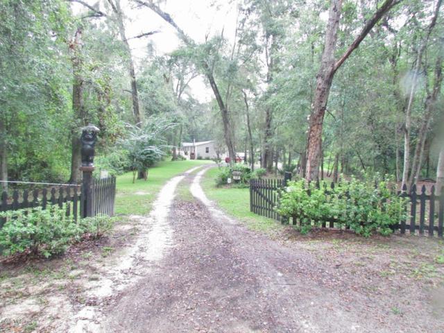 16587 SW 53rd Place, Ocala, FL 34481 (MLS #546015) :: Realty Executives Mid Florida