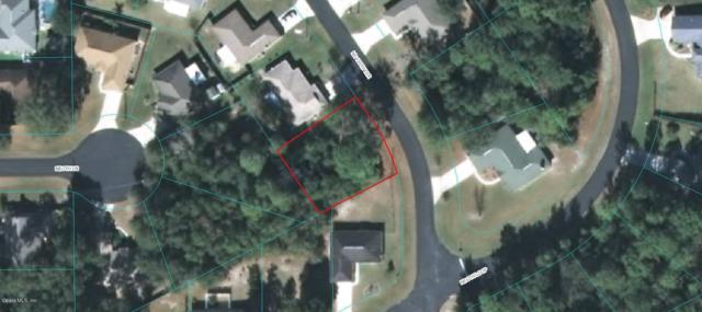 0 NE 130 Terrace, Silver Springs, FL 34488 (MLS #546050) :: Bosshardt Realty