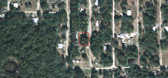 TBD NE 147th Avenue, Fort Mccoy, FL 32134 (MLS #546168) :: Realty Executives Mid Florida