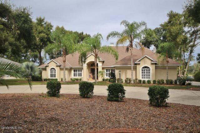 816 Hawk Landing, Fruitland Park, FL 34731 (MLS #546187) :: Bosshardt Realty