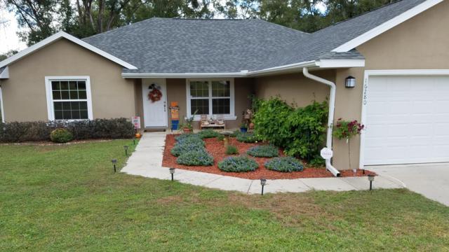 16280 SE 81st Court, Summerfield, FL 34491 (MLS #546413) :: Realty Executives Mid Florida