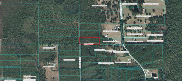 Tract 3 NE 220TH Street, Fort Mccoy, FL 32134 (MLS #546514) :: Realty Executives Mid Florida