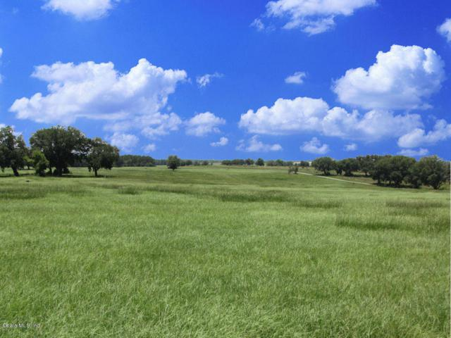 0 SW 10th Street, Dunnellon, FL 34431 (MLS #546532) :: Pepine Realty