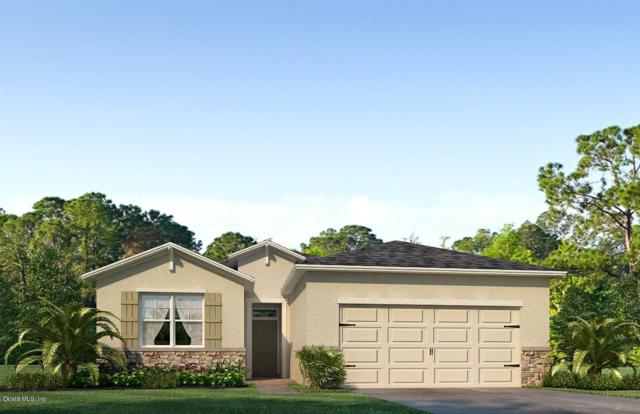 9158 SW 62nd Terrace Road, Ocala, FL 34476 (MLS #546582) :: Realty Executives Mid Florida