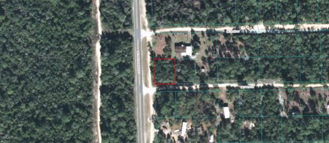 0 NE 234 Lane, Fort Mccoy, FL 32134 (MLS #546610) :: Realty Executives Mid Florida