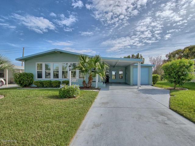 1511 E Schwartz Boulevard, Lady Lake, FL 32159 (MLS #546641) :: Realty Executives Mid Florida