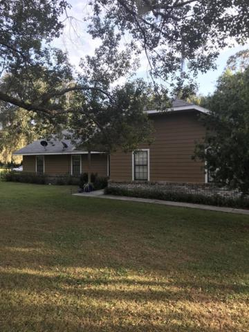 8750 NW 181 St Place, Reddick, FL 32686 (MLS #546657) :: Realty Executives Mid Florida