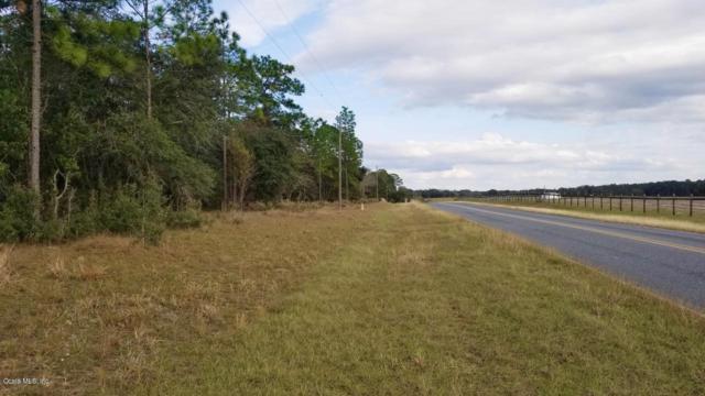 TBD NW 80 Street, Morriston, FL 32668 (MLS #546697) :: Realty Executives Mid Florida