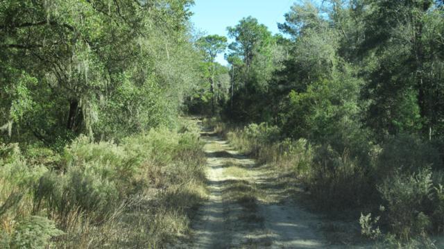 7662 W Rainbow Street, Dunnellon, FL 34433 (MLS #546750) :: Bosshardt Realty