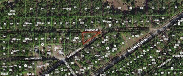 7510 W Rainbow Street, Dunnellon, FL 34433 (MLS #546755) :: Bosshardt Realty