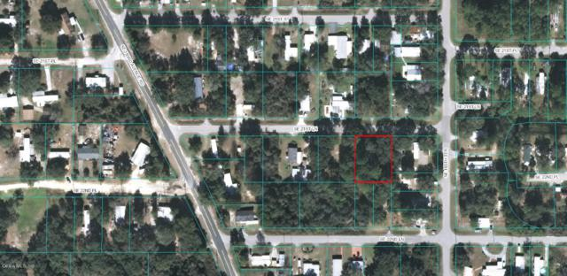 00 SE 21ST Lane, Ocklawaha, FL 32179 (MLS #546791) :: Realty Executives Mid Florida