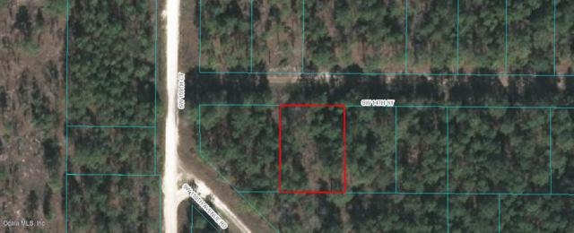 0 SW 14th St, Ocala, FL 34481 (MLS #546814) :: Realty Executives Mid Florida