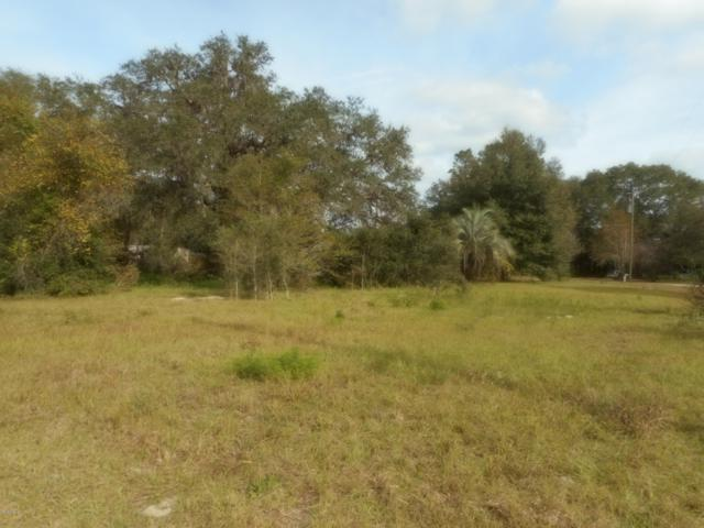 15040 NE 148th Ct, Fort Mccoy, FL 32134 (MLS #546968) :: Bosshardt Realty