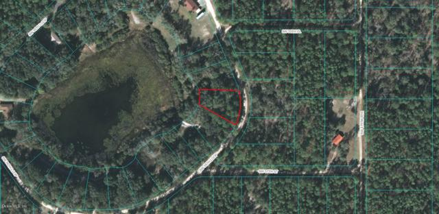 00 SW 36TH Loop, Dunnellon, FL 34431 (MLS #547031) :: Realty Executives Mid Florida