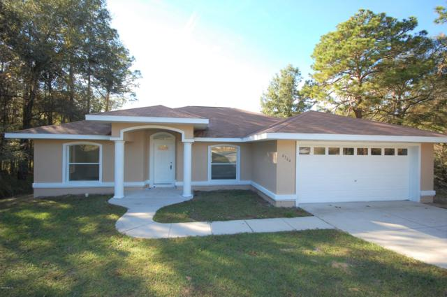4564 SW 159th Court, Ocala, FL 34481 (MLS #547059) :: Realty Executives Mid Florida