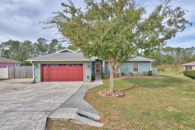 10686 SW 47th Avenue, Ocala, FL 34476 (MLS #547135) :: Realty Executives Mid Florida