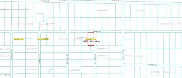 CORNER SW 81st St & Sw 135th Avenue, Dunnellon, FL 34432 (MLS #547251) :: Pepine Realty