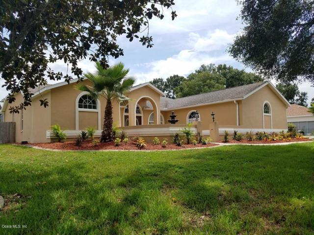7696 SW 102nd Loop, Ocala, FL 34476 (MLS #547355) :: Realty Executives Mid Florida