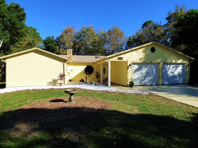 11 Laurelcherry Court, Homosassa, FL 34446 (MLS #547497) :: Bosshardt Realty