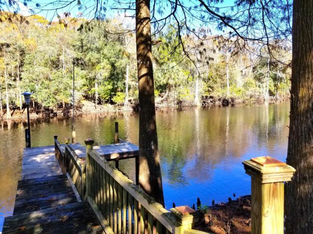 4409 E Spruce Drive, Dunnellon, FL 34434 (MLS #547528) :: Bosshardt Realty