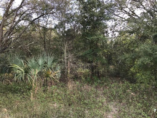 TBD NE 140th Avenue, Williston, FL 32696 (MLS #547554) :: Pepine Realty
