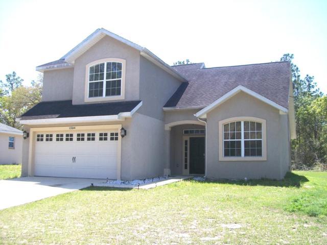 13264 73rd  Avenue Road, Ocala, FL 34473 (MLS #547592) :: Realty Executives Mid Florida