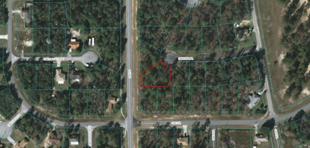 0 Oak Trail Place, Ocala, FL 34472 (MLS #547683) :: Realty Executives Mid Florida
