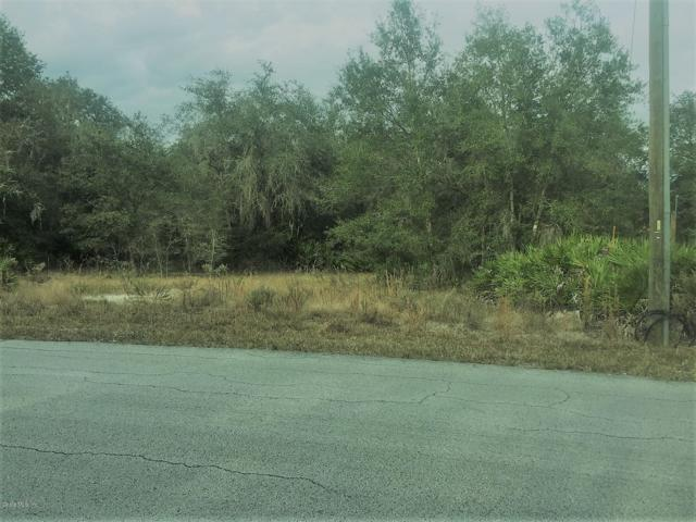 LOT 451-53 SW Shorewood, Dunnellon, FL 34431 (MLS #547700) :: Realty Executives Mid Florida