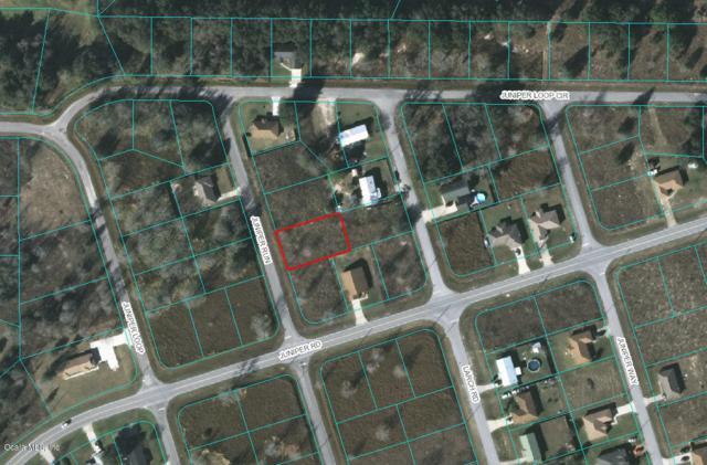 0 Juniper Run, Ocala, FL 34480 (MLS #547739) :: Realty Executives Mid Florida