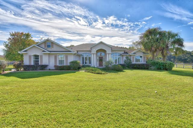 16016 NW 10th Circle, Citra, FL 32113 (MLS #547771) :: Realty Executives Mid Florida
