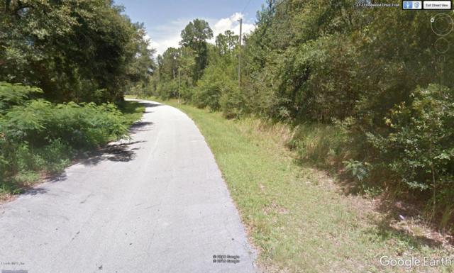 TBD Dogwood Drive Trail, Ocala, FL 34472 (MLS #547781) :: Realty Executives Mid Florida