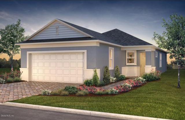 9835 SW 99th Loop, Ocala, FL 34481 (MLS #547890) :: Thomas Group Realty