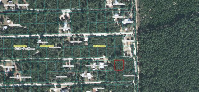 Lot 18 NE 234th Lane, Fort Mccoy, FL 32134 (MLS #547959) :: Realty Executives Mid Florida