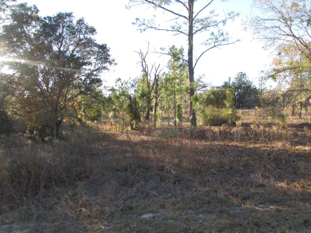 0 NW Tree Top Lane, Dunnellon, FL 34432 (MLS #547967) :: Pepine Realty