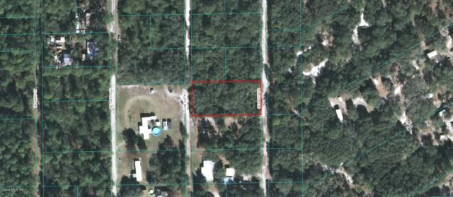 0 NE 144 Terrace, Fort Mccoy, FL 32134 (MLS #547992) :: Bosshardt Realty