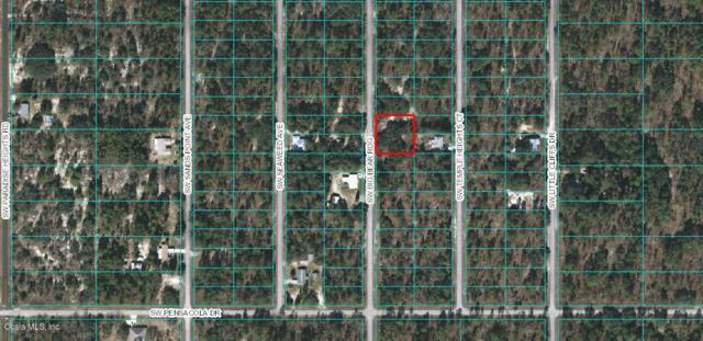 LOTS 37/38 SW Big Bear Ridge, Dunnellon, FL 34431 (MLS #548013) :: Pepine Realty