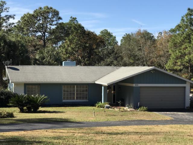 9015 SW 204 Circle, Dunnellon, FL 34431 (MLS #548065) :: Realty Executives Mid Florida