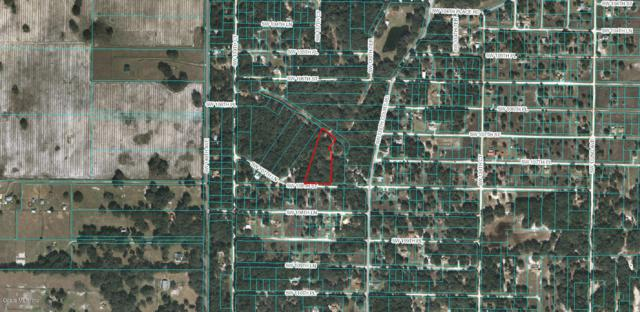 TBD SW 108 Street, Dunnellon, FL 34432 (MLS #548081) :: Thomas Group Realty