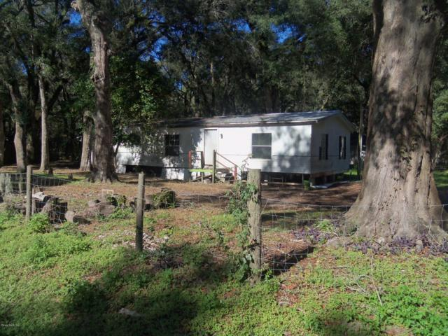 6570 NW 61st Avenue, Ocala, FL 34482 (MLS #548145) :: Realty Executives Mid Florida