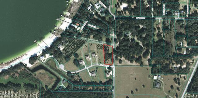15674 SE 140th Avenue, Weirsdale, FL 32195 (MLS #548300) :: Bosshardt Realty