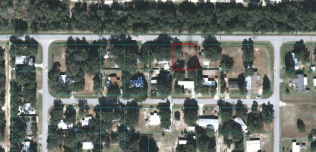 18386 SE 52ND Street, Ocklawaha, FL 32179 (MLS #548371) :: Thomas Group Realty