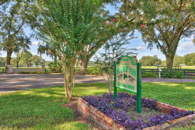 14050 W Highway 326, Ocala, FL 34482 (MLS #548435) :: Pepine Realty