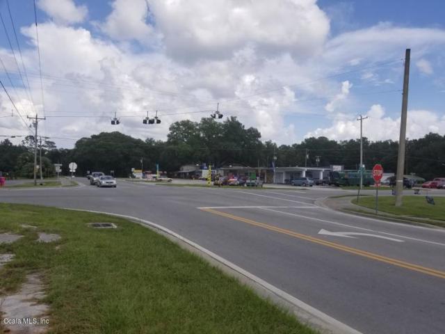 14820 NE Hwy 315, Fort Mccoy, FL 32134 (MLS #548476) :: Pepine Realty