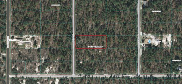 TBD Tamiami Place, Dunnellon, FL 34431 (MLS #548557) :: Pepine Realty