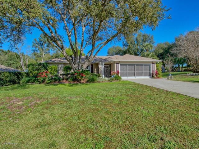 205 Hanging Moss Lane, Lady Lake, FL 32159 (MLS #548695) :: Realty Executives Mid Florida